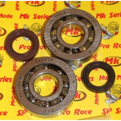 Seals - Bearings 2T Piaggio scooter Metrakit Pro Race