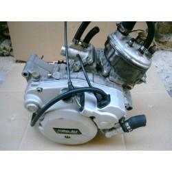 Motor Minarelli AM6 Rieju - Malaguti - etc ...