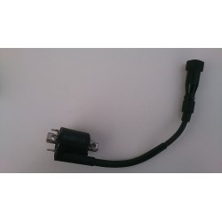 Ignition coil assembly Yamaha YZF-R125