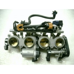 Intake throttle bodies...