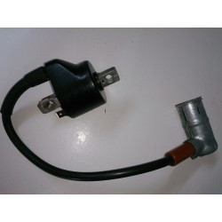 Ignition coil Cagiva Roadster 521
