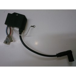 Ignition Coil / CDI Derbi Senda o GPR (Leonelli Ref. 018)