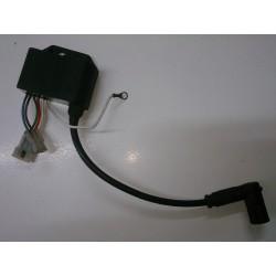 Ignition Coil / CDI Derbi Senda o GPR (Leonelli Ref. 018)