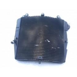 Radiador agua Suzuki RF600