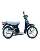 Honda Scoopy SH75