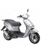 Derbi Atlantis 100