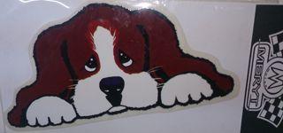 Adhesiu gos
