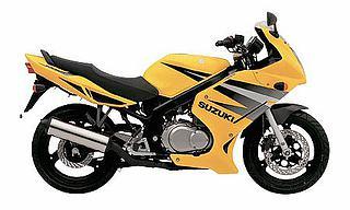Suzuki GS 500F 2004
